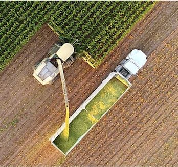 Harvesting Machinery in Action