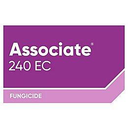 Logo_Associate® 240 EC