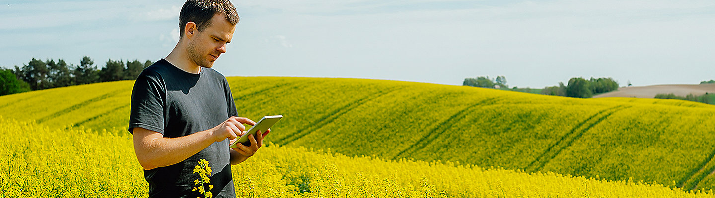 Clearfield® Canola
