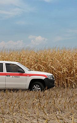 Maiz Camioneta Agronomo Pioneer