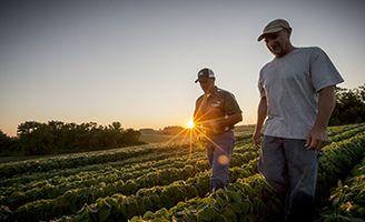Agricultores caminando