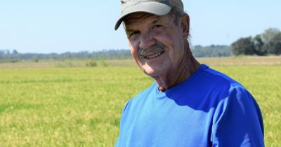 B.D. Fontenot in rice field
