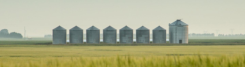 Barley field and bins