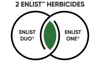 Icon - 2 Enlist Herbicides