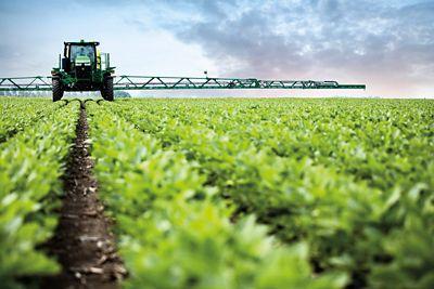 Photo - soybean field operation - early season
