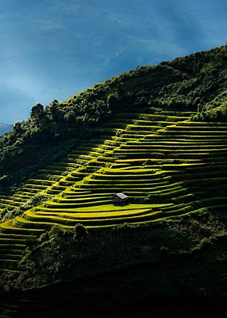 Terraced field with sunbeams