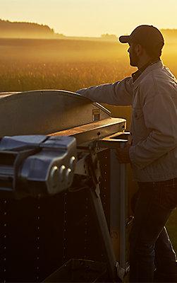 Farmer on back of grain truck at sunset