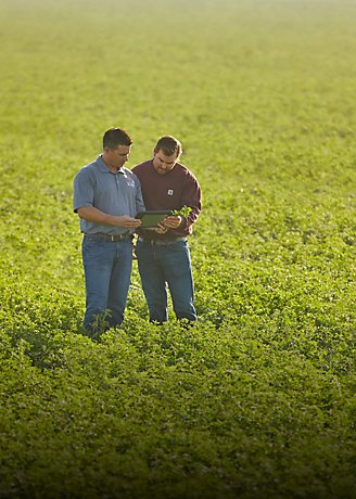Men in field with tablet