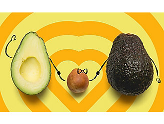 Two halves of an avocado with the seed in the middle. Drawing of hands from the two halves and seed are holding each other.