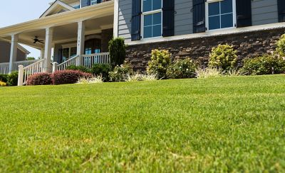 Cut grass with house in the background