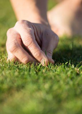 Hand touching grass