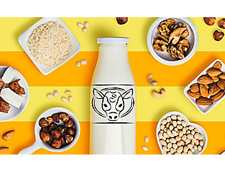 A bottle of milk surrounded by different types of products that make up other milks.