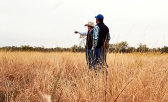 LandVisor App Tutorial