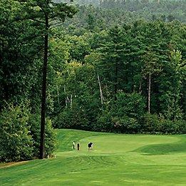 golf course turf
