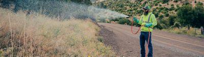 Applicator spraying roadside brush