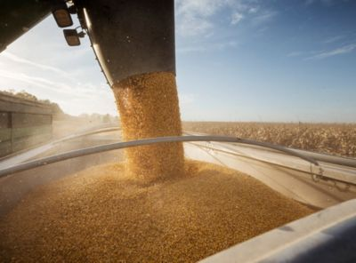 corn pouring in grain cart