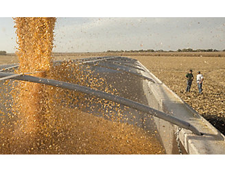 corn-seed-pouring-into-grain-bin-1_beauty_1_64-1