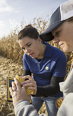 farmer-rep-instecting-corn-w-tablet
