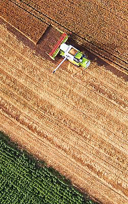 IMG_harvest_field_251_400