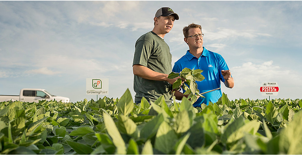 Growing Point Agronomy soybean field