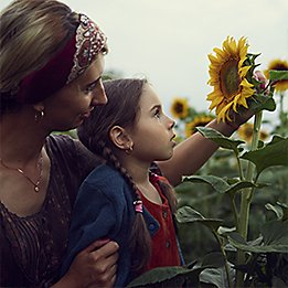 Sunflower_261x261