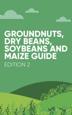 grid column_beans_new
