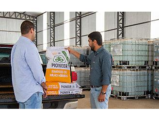 Dois homens olhando para uma sacaria de milho que está no bagageiro da camionete.