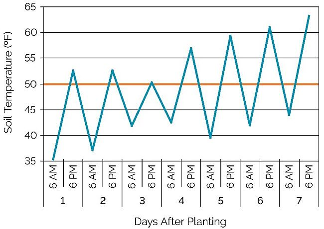 Chart showing soil temperatures at 6 AM and 6 PM for seven days after planting in a stress emergence field location near Eau Claire, WI.
