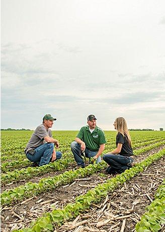 Pioneer reps in a soybean field