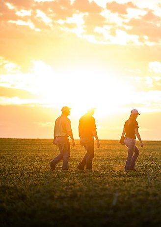 Three people walk on field
