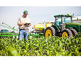 Farmer checking corn field using tablet