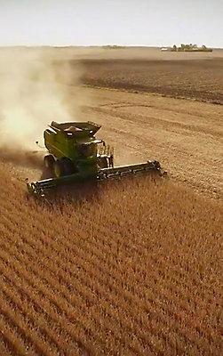 Combine harvesting soybean field