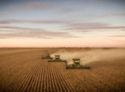 Combines harvesting field