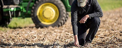 Inspecting soybean stubble