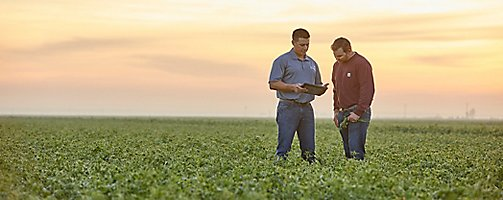 Rep and farmer in alfalfa field