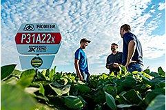P31A22x Field Sign in soybean field