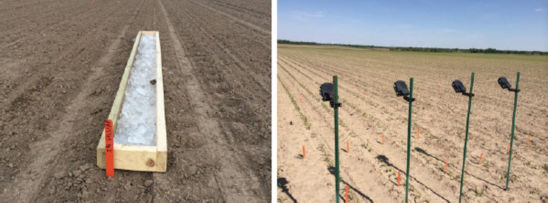 Photos: Forms for holding ice over the row (left). Time-lapse camera used to monitor corn emergence (right).
