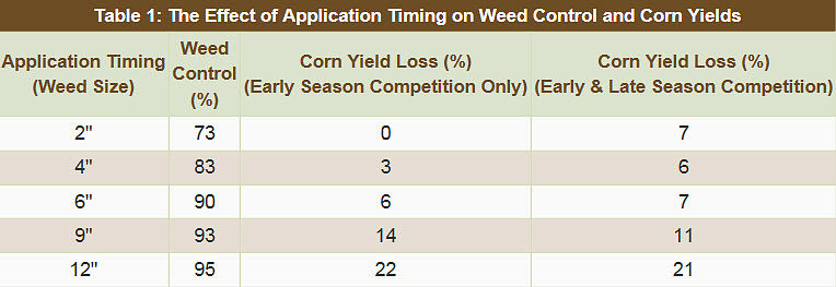 The Effect of Application Timing on Weed Control and Corn Yields