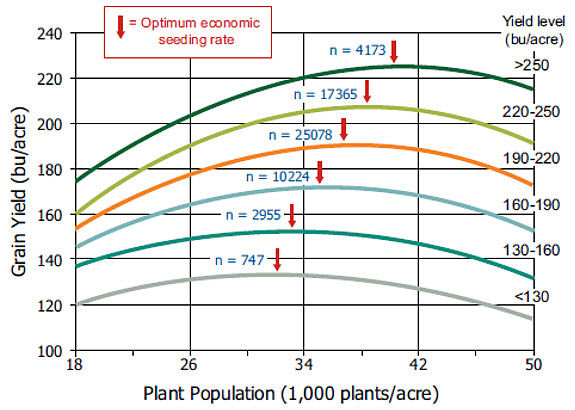 Corn yield response to population and optimum economic seeding rate.