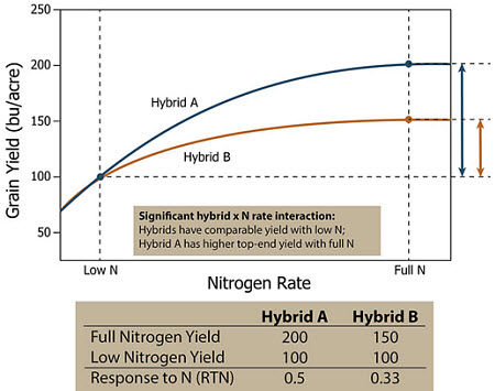 Response of two hypothetical corn hybrids which both hybrids have similar yields under low N