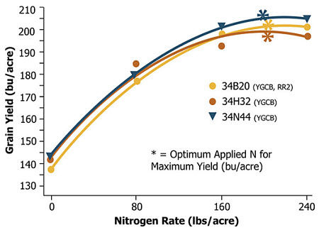 Average grain yield response of three Pioneer brand hybrids to N application rate across eight environments (2004).