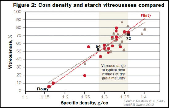 Corn density and starch vitreousness compared.