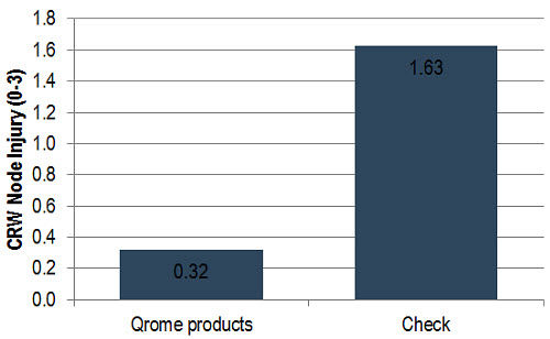 Average CRW node injury for Qrome products and the non-protected check at moderate and high CRW pressure locations.