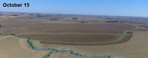 Photo - improved corn plant health in the treated strip is still visible in a drone image taken in mid-October.