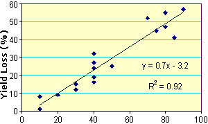 Yield loss for corn when frost damage occurs at the 7 to 10 leaf collar stage of maturity (Carter, 1995).