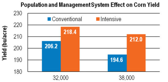 Chart: Population/Mgmt System Effect on Yield