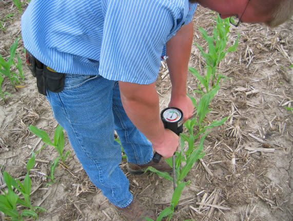 Measuring soil compaction.