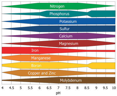 Relative availability of plant nutrients by soil pH.