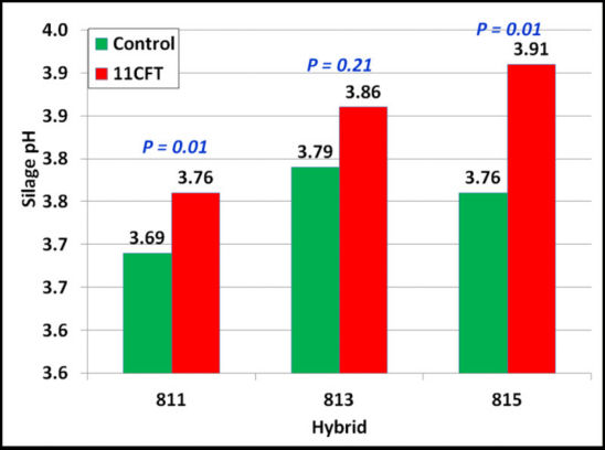 Silage pH in control and 11CFT-treated hybrids