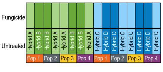 Chart: Plot layout